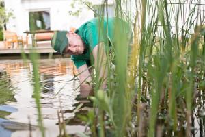 Teichgestaltung Teichbau