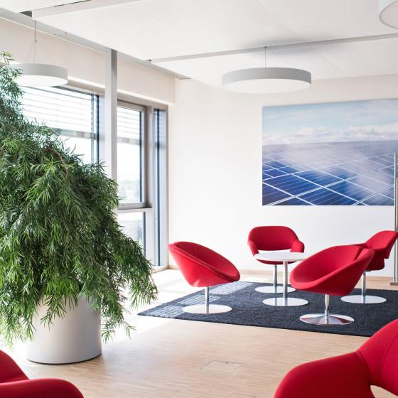 Bürobegrünungen Kassel