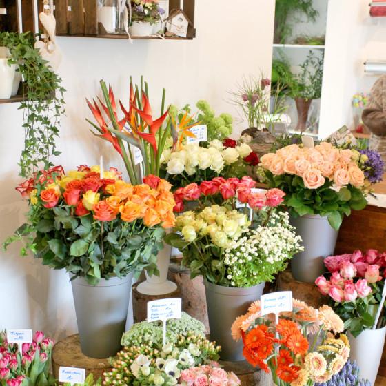 Blumenladen Kassel