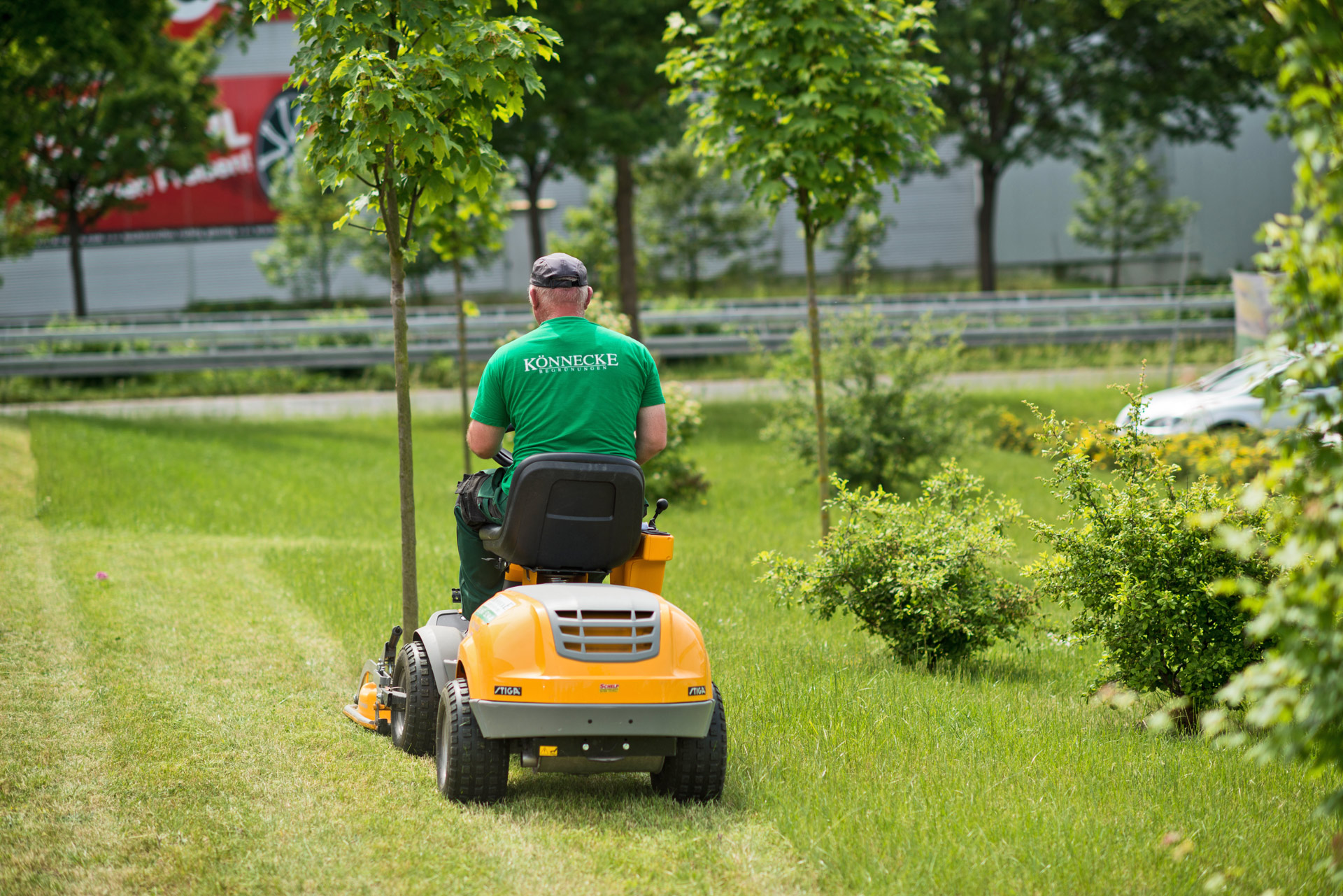 Gartenpflege Kassel