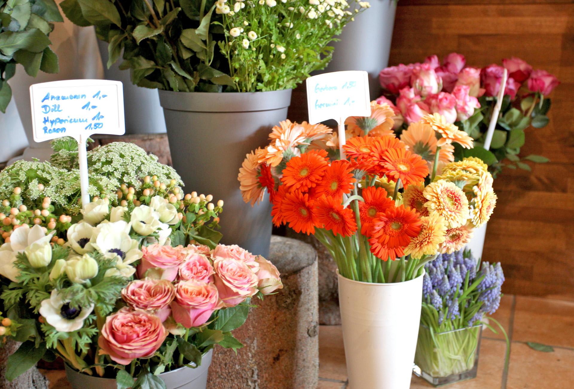 Frische Blumen Kassel